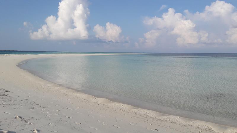Malediven 2018 (127)