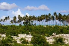 Reif-für-die-Insel-2017-24