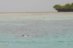 Reif-für-die-Insel-2017-42
